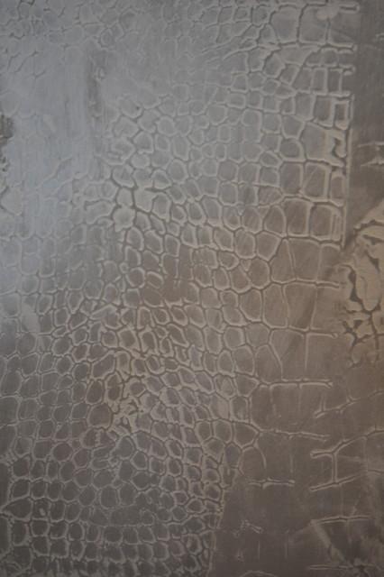 Faux Crocodile Venetian Plaster Modern Entry New