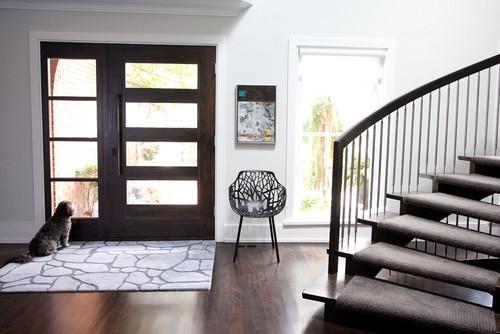 Front Door modern entry