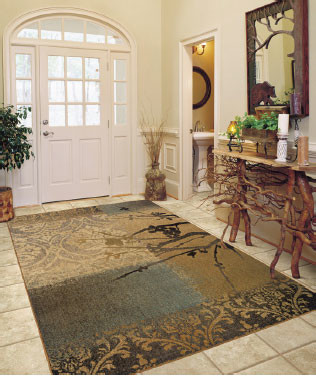 High Quality Front Entry Transitional Kansas City By Area Rug