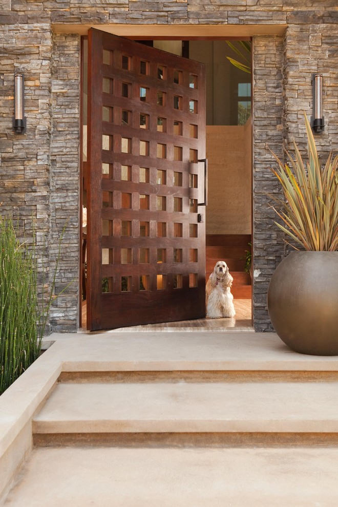 Inspiration for a rustic pivot front door remodel in Los Angeles with a dark wood front door