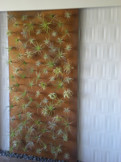 Indoor Tillandsia Living Wall / Flora Grubb