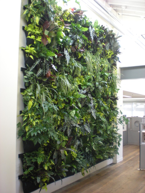 Indoor Vertical Garden / Flora Grubb Contemporary Entry