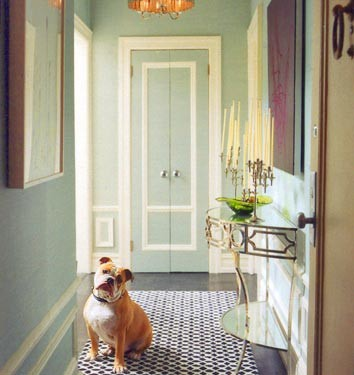 Max the Bulldog - Domino Magazine Pet  entry