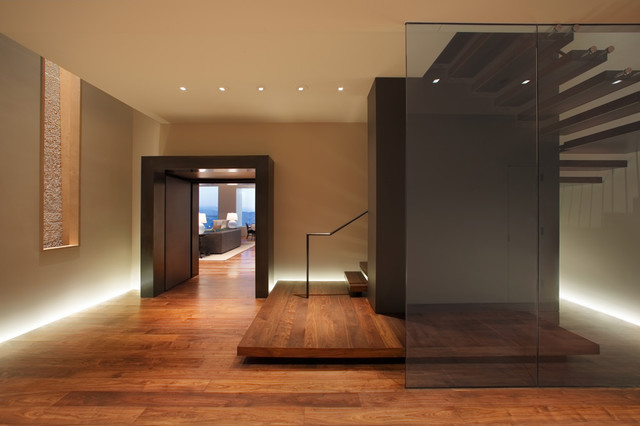Museum Tower Penthouse Contemporary Entry San