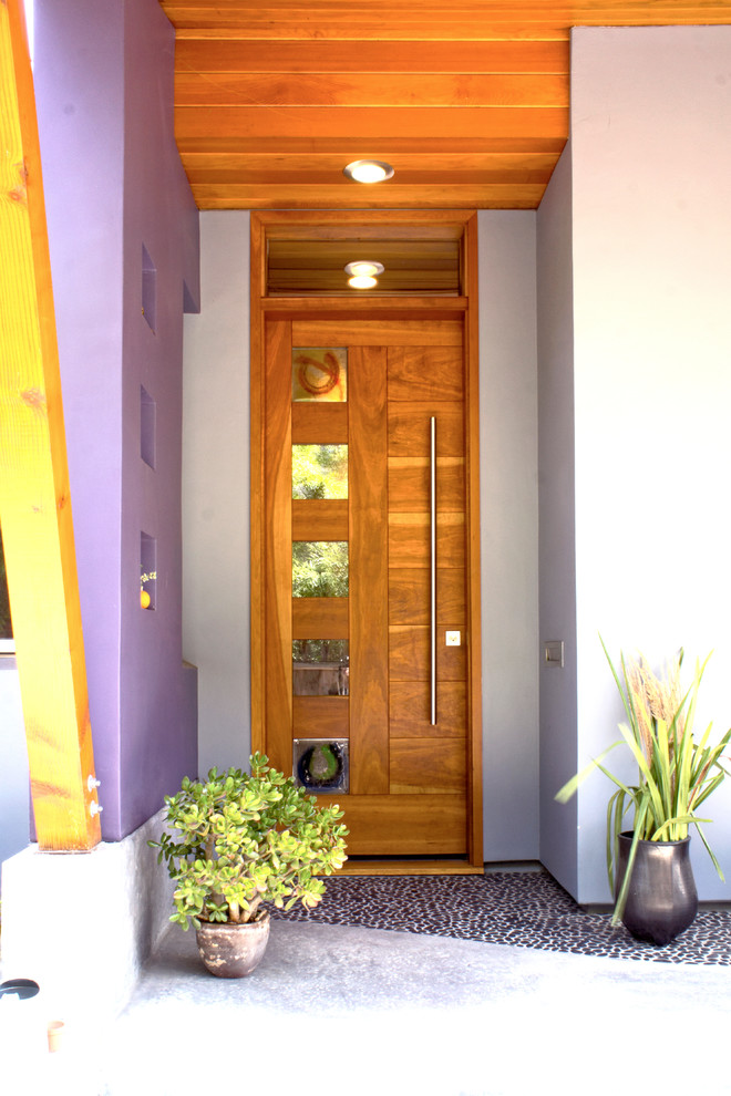 Inspiration for a contemporary front door in San Francisco with a single front door and a medium wood front door.