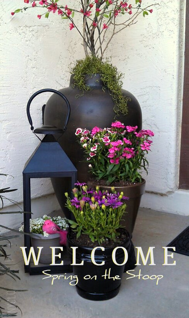 Spring on the Stoop traditional-entry