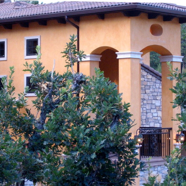 Venetian Plaster Exterior 2 Mediterranean Entry Other By Old World