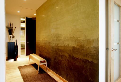 Venetian Wall Finishes : Venetian plaster rothko style contemporary entry
