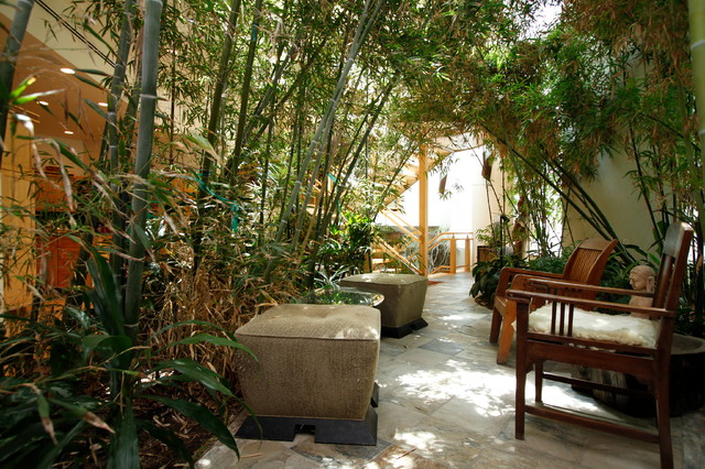Venice sustainable jungle house asian patio los for Wanddeko outdoor