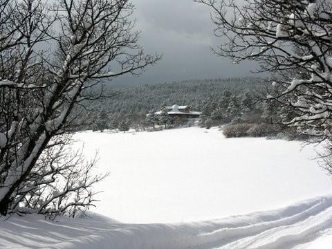 3.   Wild Turkey Ranch near Beulah, CO