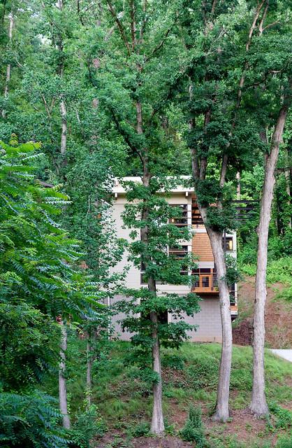 Asheville Retreat modern