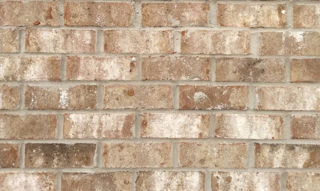Beechwood Brick Exterior Birmingham By Acme Brick
