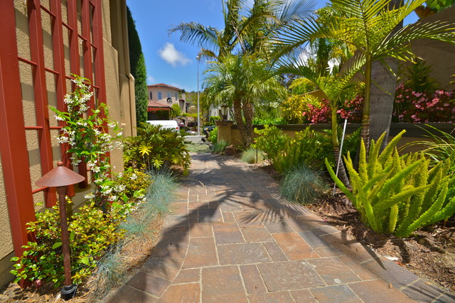 Carlsbad tropical meets low maintenance for Tropical low maintenance plants