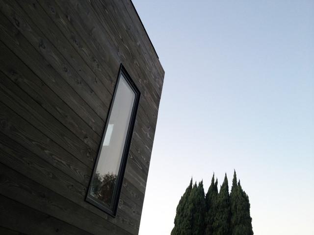 Dark Stained Cedar Siding At Linear Window Midcentury