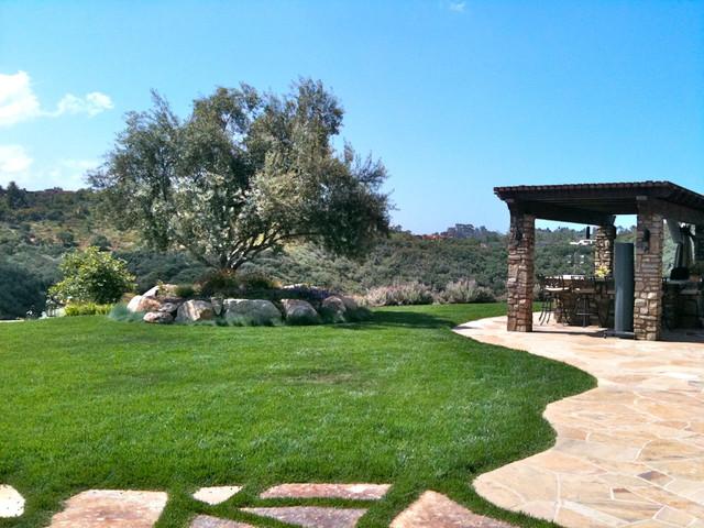 Design Build: Tuscan Olivenhain mediterranean-landscape