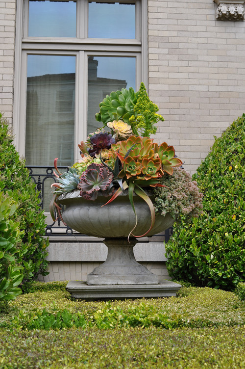 Container Garden Design colorful flowers plant in the container garden with some foliages in the edge and round Succulent Container Garden Designs Lifescape Colorado