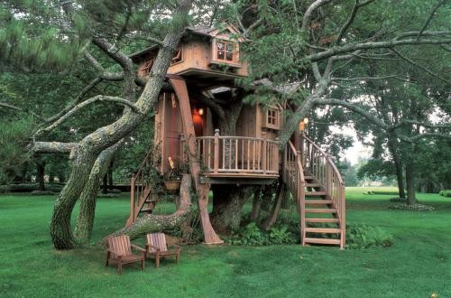 Tree House from Houzz.com