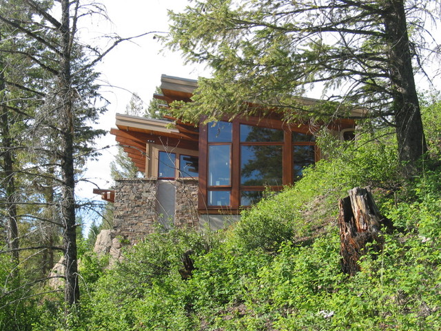 Exterior side view nestled into landscape contemporary-exterior