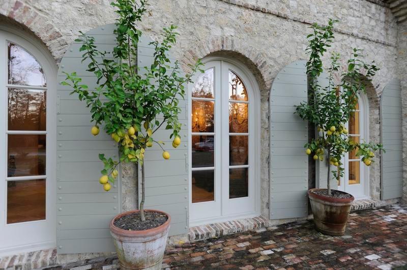 Exterior Window Feature