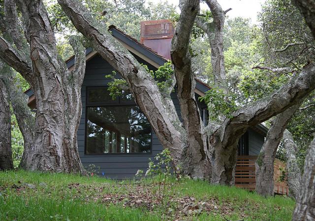 Feldman Architecture contemporary-exterior