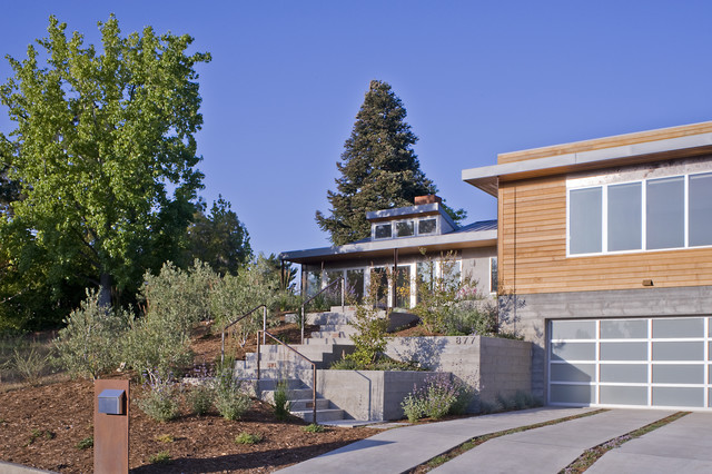 Friedman contemporary-exterior