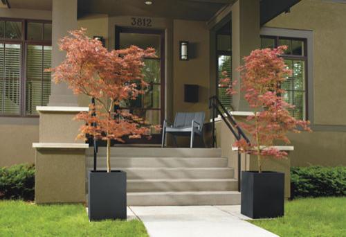 Front Porch modern-exterior