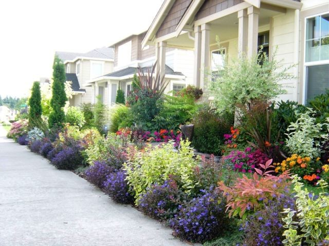 Front yard in the state of washington contemporary for Flower landscaping ideas for front yards
