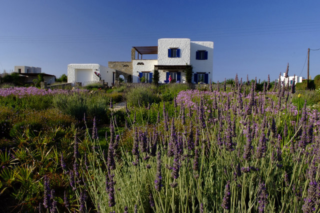 Garden design in Greece on the island of Paros rustic-exterior