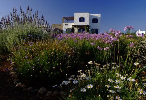 Garden design in Greece on the island of Paros mediterranean exterior