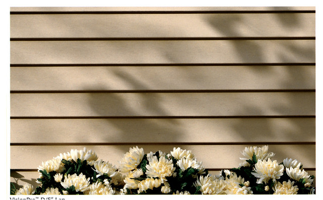 Georgia Pacific Vinyl Siding Traditional Exterior