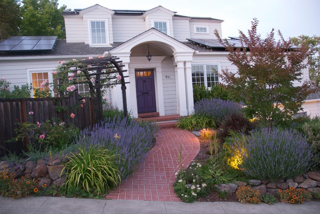 Harvard residence traditional exterior san francisco for Verdance landscape design