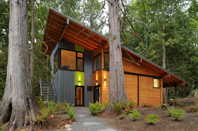 house in the woods contemporary exterior