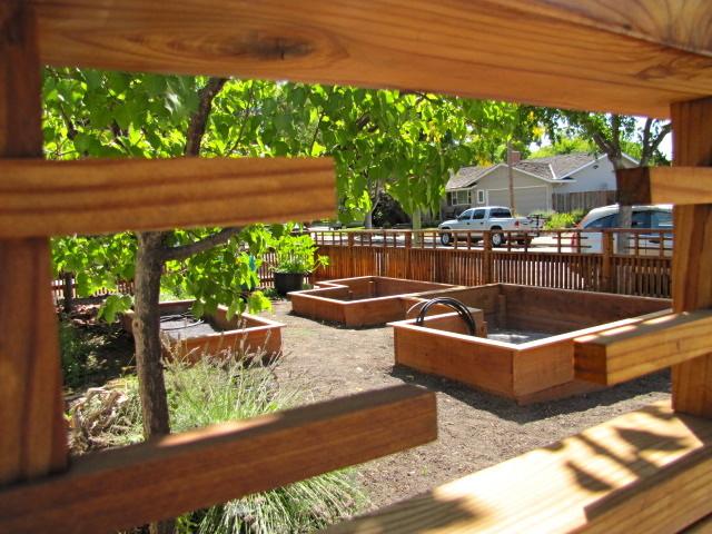 japanese style edible front yard garden exterior san francisco