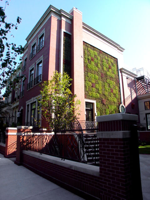 LG Construction + Development Exterior modern-exterior