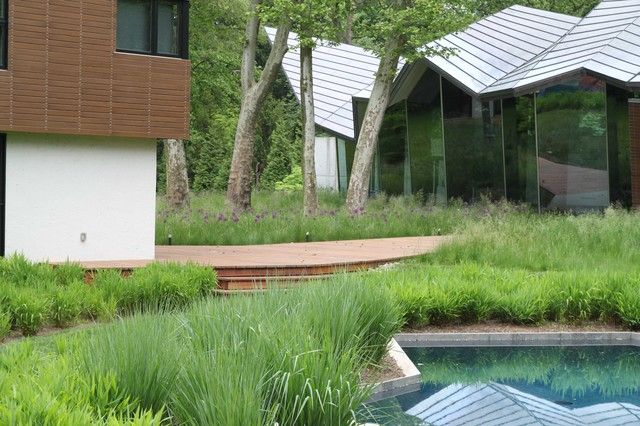 Meadow and pool contemporary exterior philadelphia for Jonathan alderson landscape architects