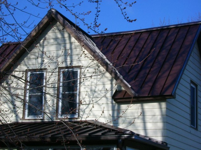 Metal Roofing traditional-exterior