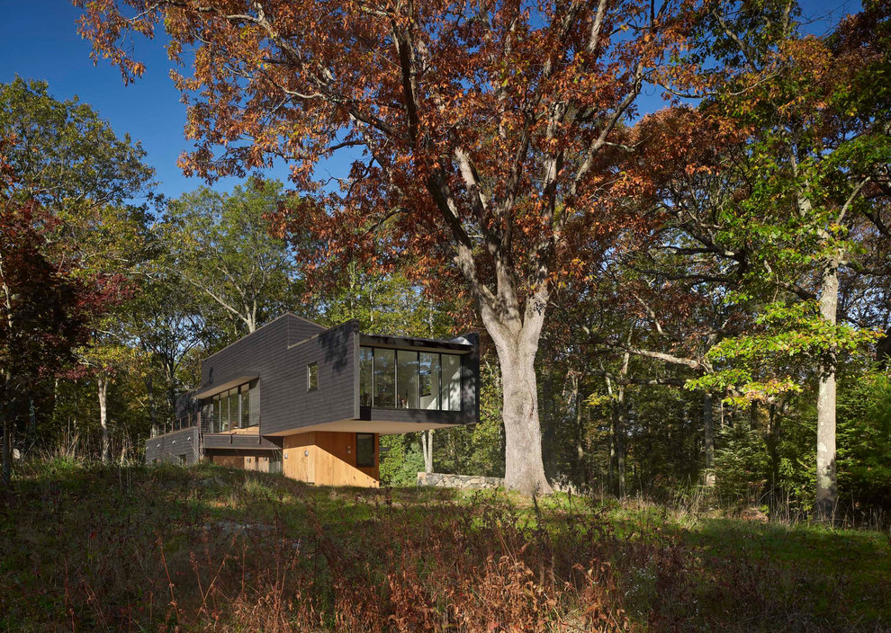 Example of a minimalist wood exterior home design in Other