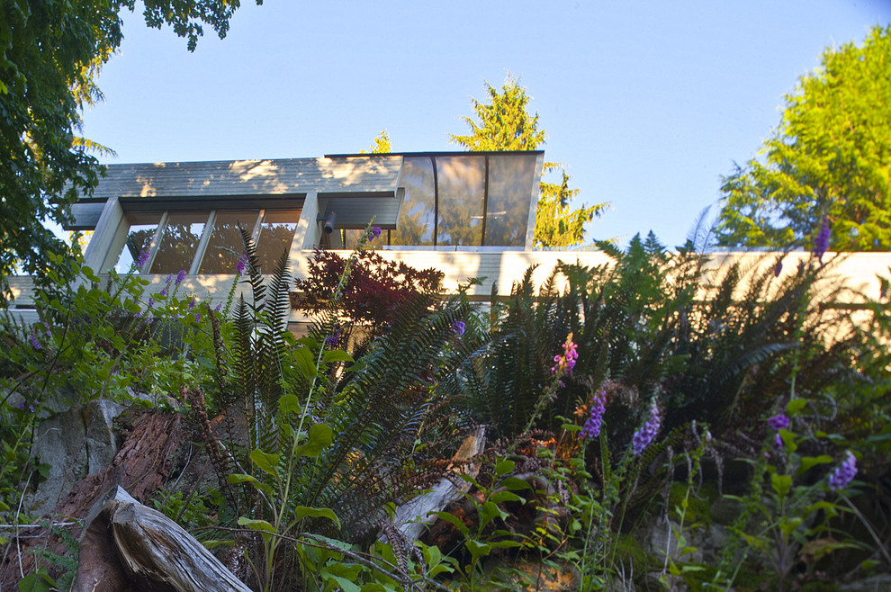 Large minimalist beige two-story wood exterior home photo in Vancouver