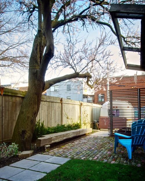 Backyard modern exterior