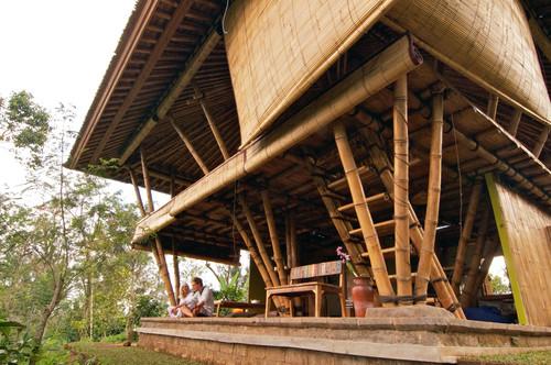 lame de bambou