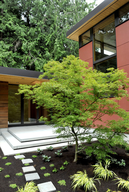 Perilstein Residence - Bainbridge Island Architect Coates Design contemporary-exterior