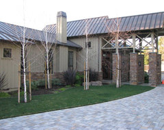 Plant trees next to new custom home traditional-exterior
