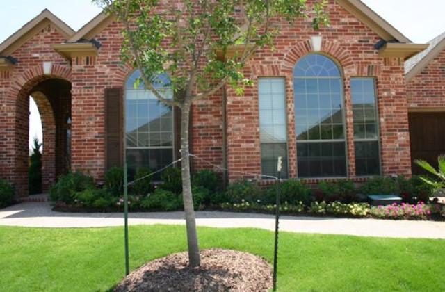 Prestige 40 Traditional Exterior Dallas By Home Window Tinting
