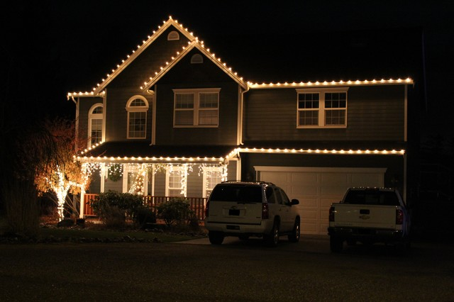 Professional Christmas Light Installation traditional-exterior