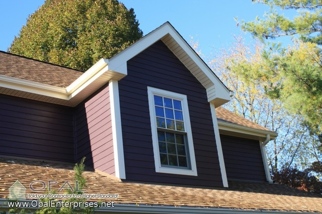 Purple House With New Doors Siding Roofing In Naperville Traditional Exterior Other