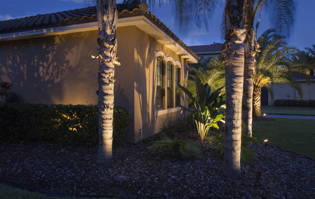 florida lightning and landscape lighting tropical exterior tampa