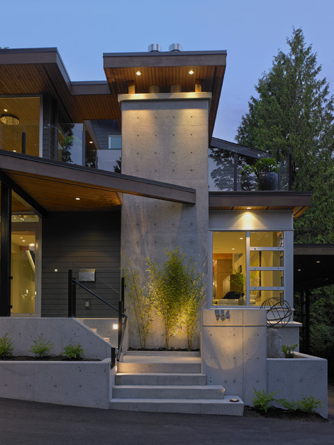 Steps leading to the front door modern exterior for Modern house exterior stairs