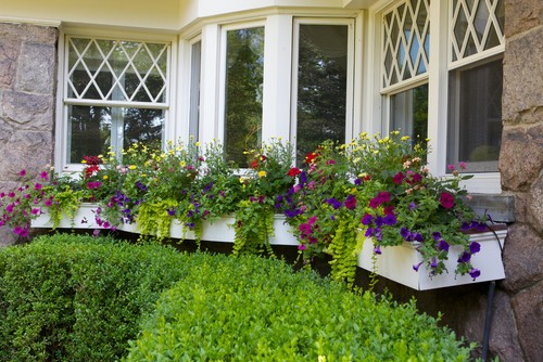 traditional exterior gardening outdoor