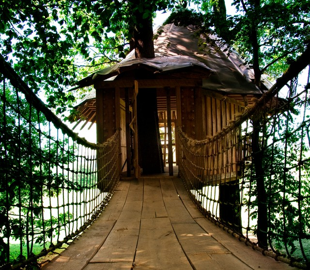 Tropical exterior home idea in Philadelphia