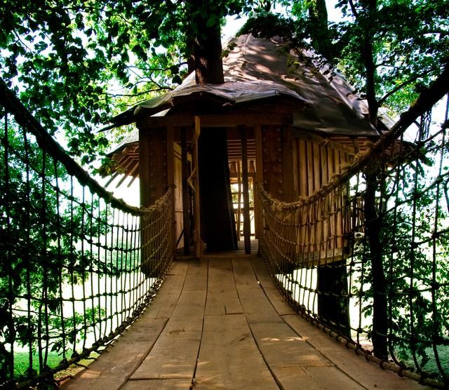 Tree House tropical-exterior
